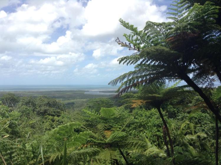 Cairns, au nord du Queensland. Entre grande barrière de corail et mangroves.