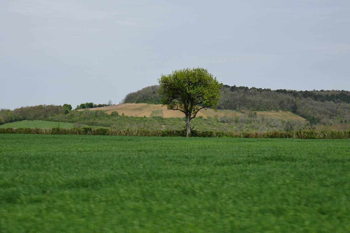 bourgogne-roadtrip-galswind