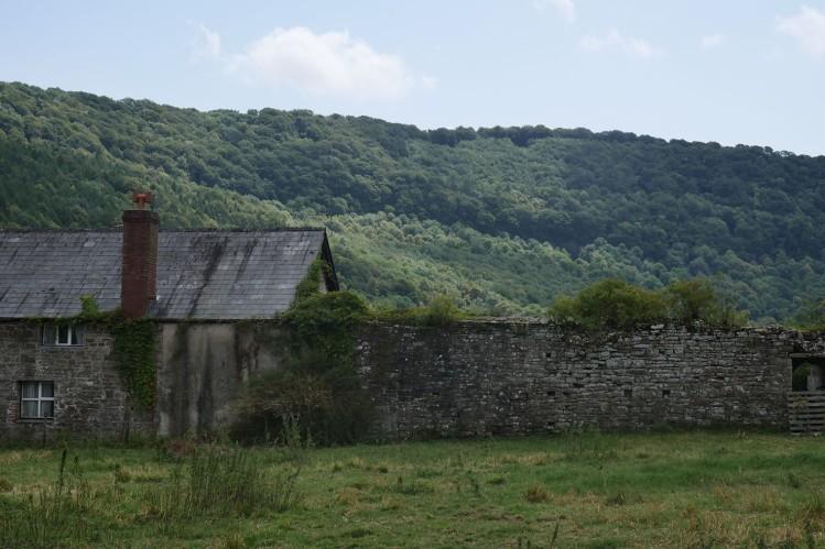 tintern-abbey